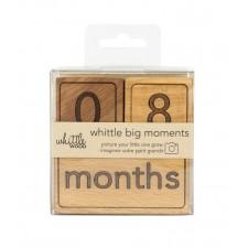 """Whittle Wood - Blocs """"Big Moments"""""""